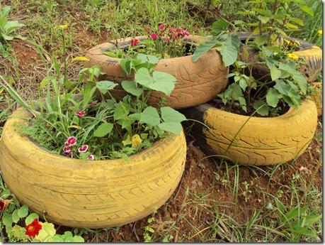 plantio em pneus