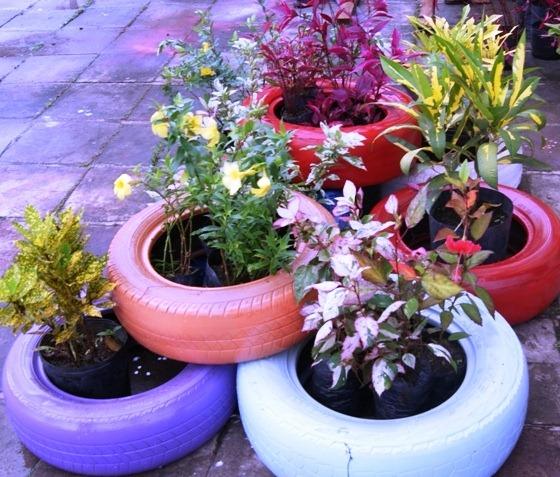 Jardins e hortas – reciclando pneus (2)Jarcy Tania