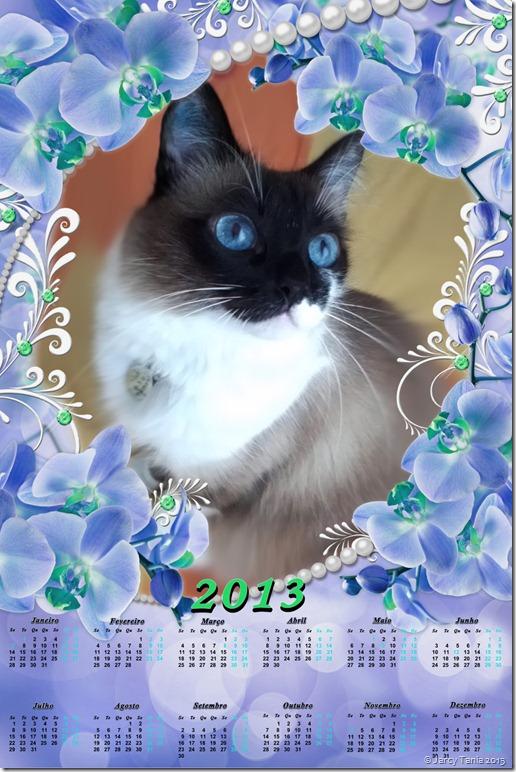calendario 2013b