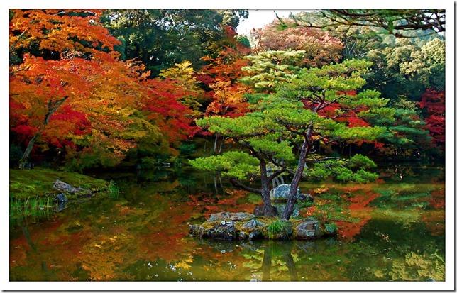 japan-garden-wallpaper
