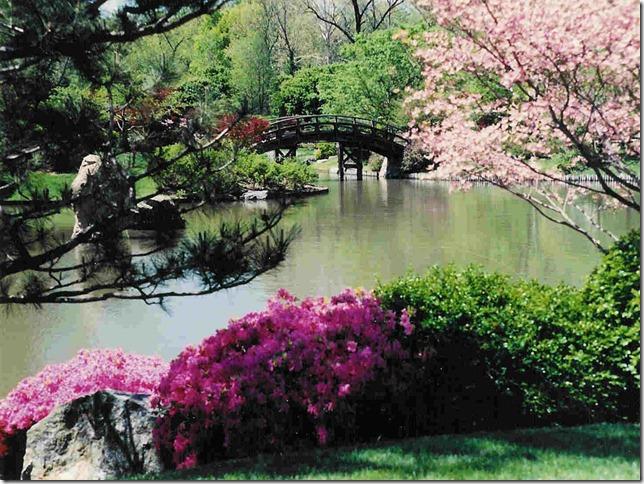 spring-japanese-garden-wallpaperfree-spring-japanese-garden-wallpaper---download-the-free-spring-3rw1kn4v