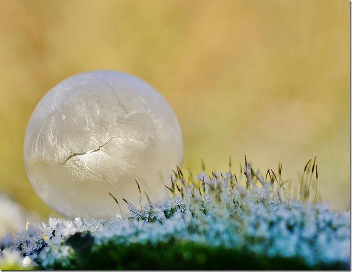 frozen-bubbles-angela-kelly-4
