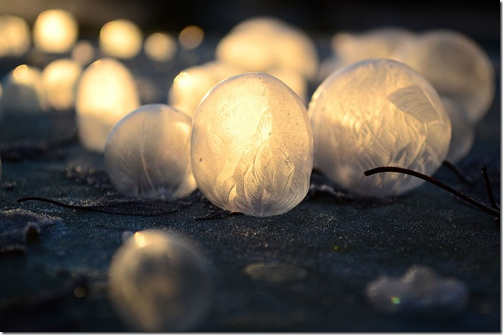 frozen-bubbles-angela-kelly-8