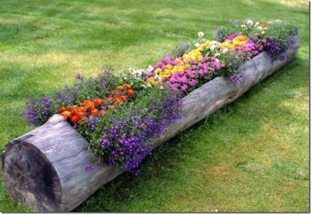 decor-tronco-arvore-jardim