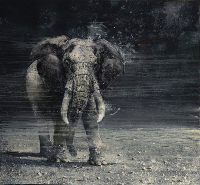 03-The-elephant-hotel120X130cm