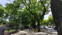 A_ruas-e-avenidas21